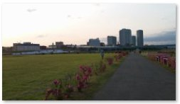 早朝の兵庫島公園
