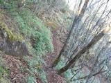 片側が谷の細い道が続く