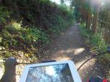 バイクで山道を走る