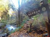 白谷沢登山道