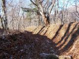 落ち葉が深く積もったトレイル