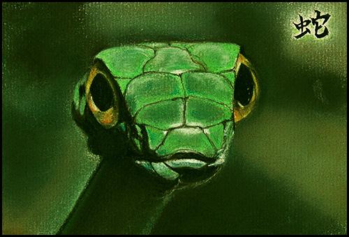 snake01-blog.jpg