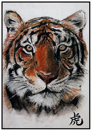 tiger01-blog.jpg