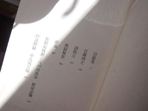 12.12.20ブログ用CIMG7651 (4)