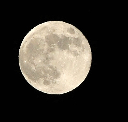 Hunting Moon-03