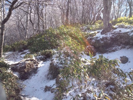 20121104白い景色