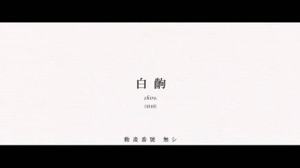 sirokoma_437_246.jpg