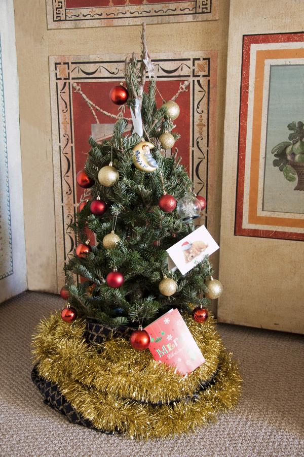 ChristmasTres.jpg