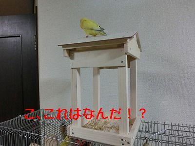 エサ台ミニバージョン完成♪