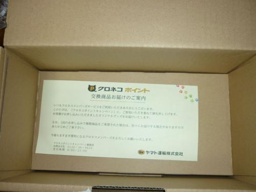P1830460.jpg