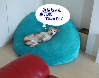 11_09_24_01.jpg
