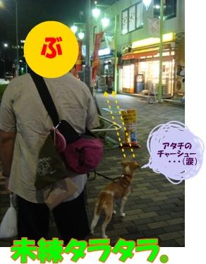 11_09_26_02.jpg
