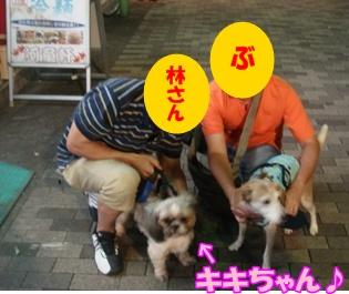 11_09_26_04.jpg