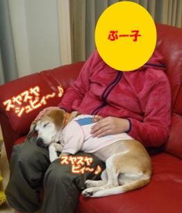 11_10_27_03.jpg