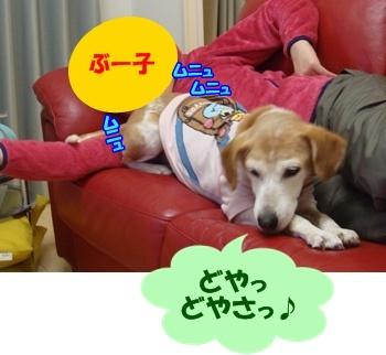 11_10_27_10.jpg