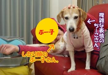 11_10_27_12.jpg
