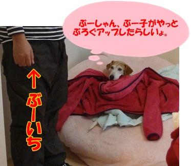 11_12_02_01.jpg