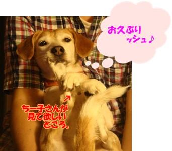 12_05_18_01.jpg