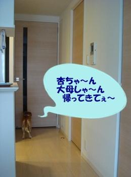 12_07_24_04.jpg