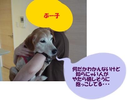 12_07_24_06.jpg