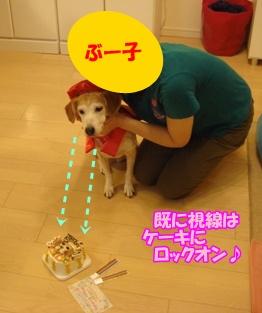 12_08_11_05.jpg