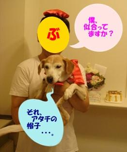 12_08_11_08.jpg