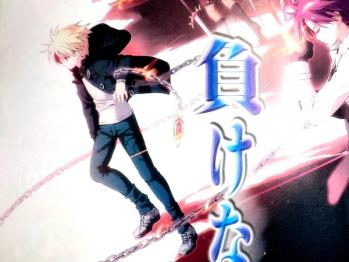 Fate/kaleid liner プリズマ☆イリヤ ドライ!! 第11話 感想 (2)