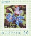 stjpn12401.jpg