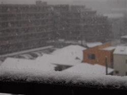 1月14日初雪1