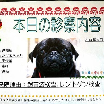 2013-04-12-11-29-01_deco[1]