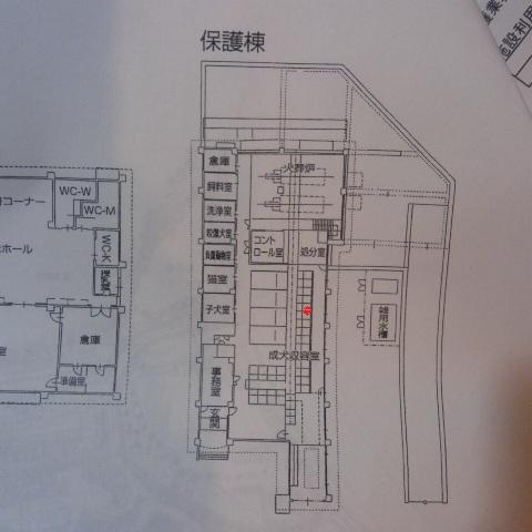 DCIM0481.jpg