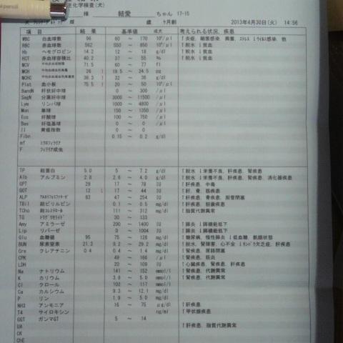 DCIM0483.jpg