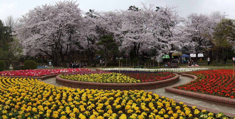 里見公園NO.2