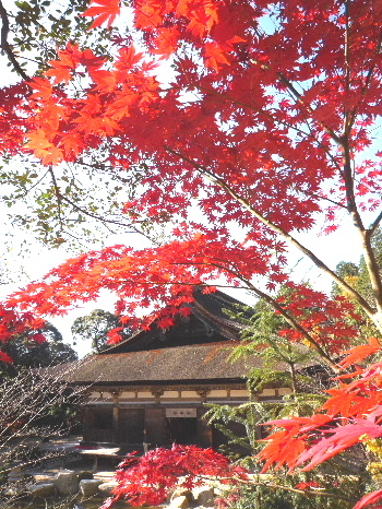Zensuiji1.jpg