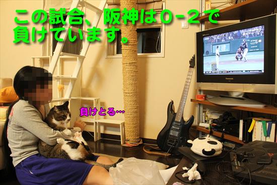 IMG_0164_Rこの試合、阪神は0-2で