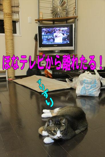 IMG_0035_Rほなテレビから離れたる!