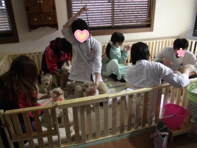 〇東動物病院のスタッフ1