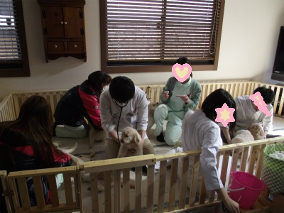 〇東動物病院のスタッフ2