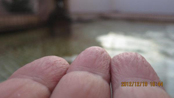 1ab20121219_2.jpg