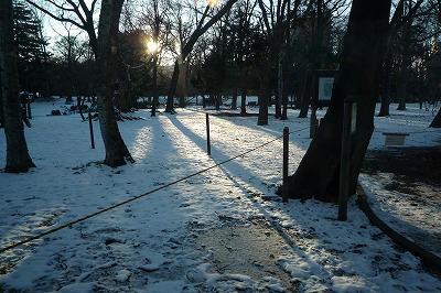 20121201 (2)夕陽