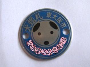 DSCF0226_20120611203937.jpg
