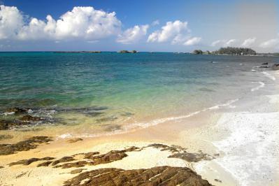11月は沖縄