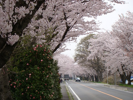 木曽岬10