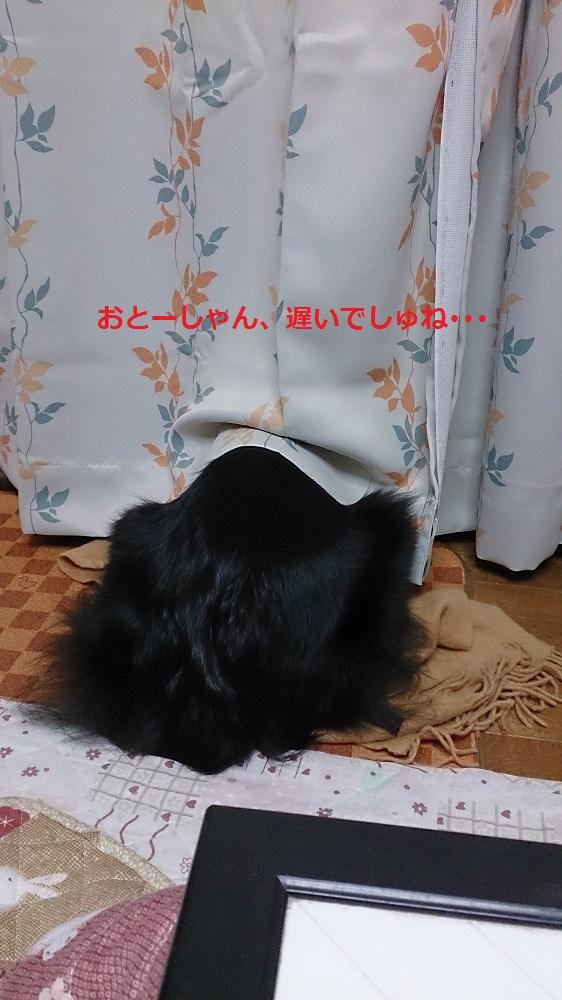 s-IMG_20131213_202441.jpg