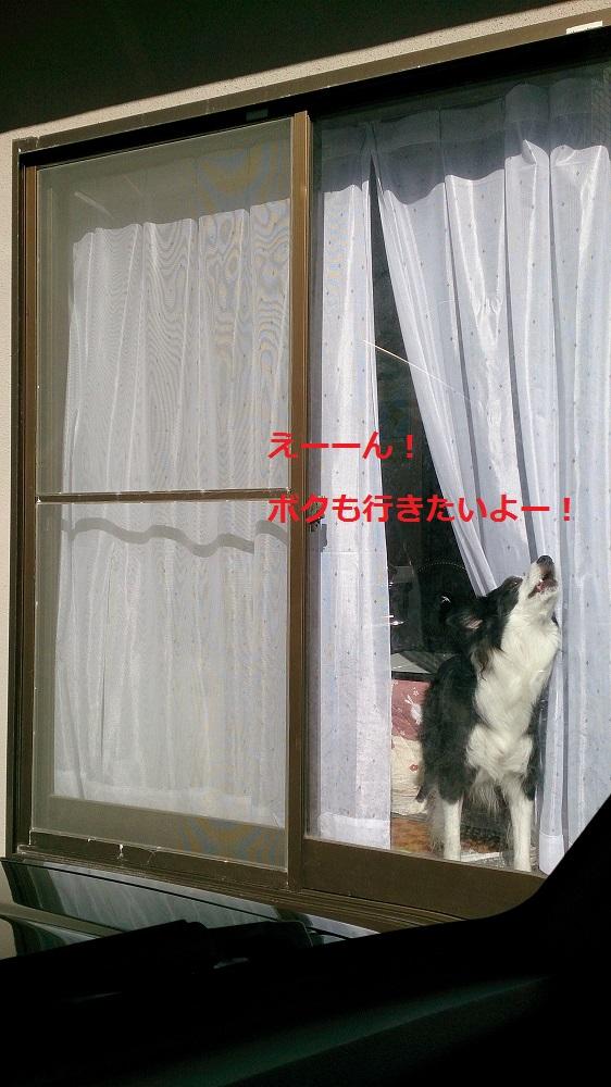 s-IMG_20131221_191450.jpg