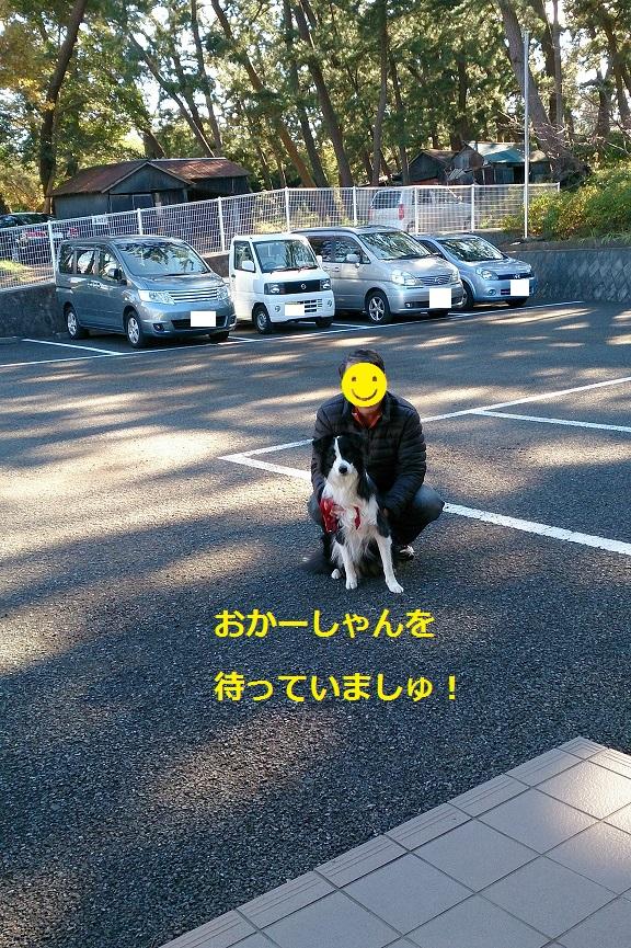 s-IMG_20131222_181127.jpg