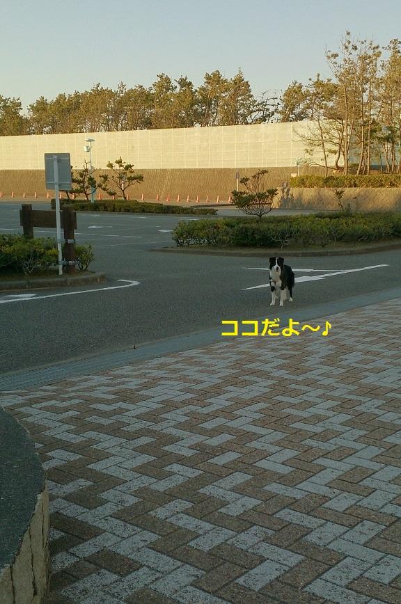 s-IMG_20140102_201908.jpg