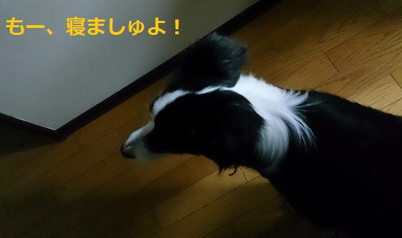 s-IMG_20140127_191904.jpg