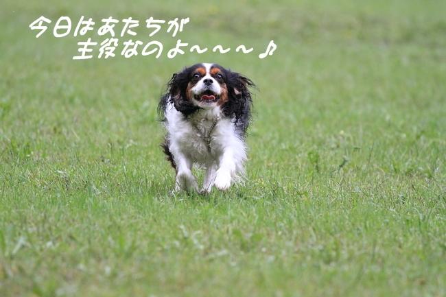 2011 09 04_8008