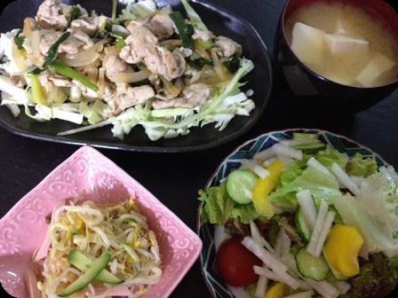 塩ダレ豚+千切りキャベツ+お豆腐のお味噌汁+もやしの中華風サラダ+グリーンサラダ